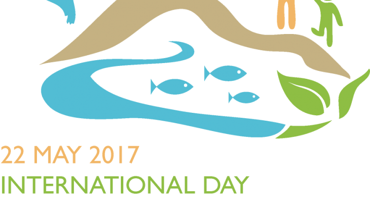 idb-2017-logo-en